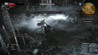The Witcher 3  Убить туманника на макс сложности, убил после после полторахи пива с 3 раза/