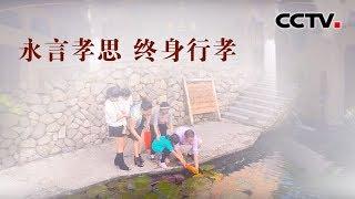 [中华优秀传统文化]小村里的孝心菜| CCTV中文国际