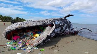 Most SHOCKING Facts About Plastic!