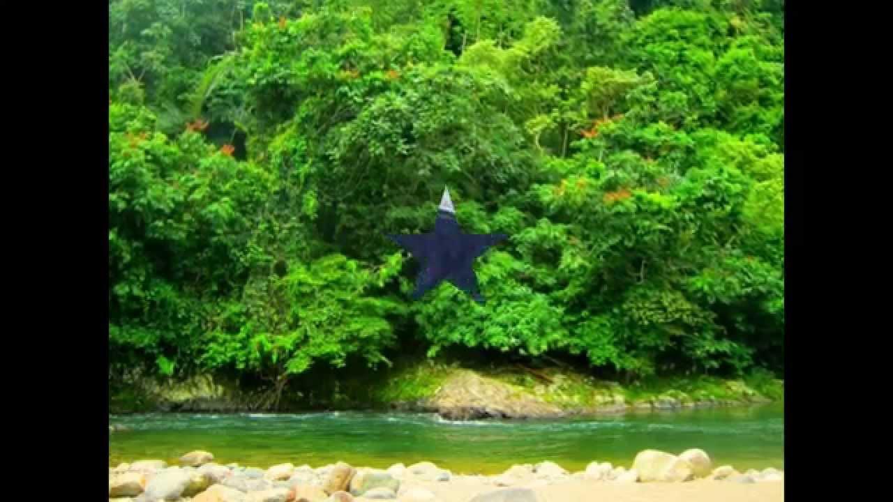 Taman Nasional Kerinci Seblat Sumatera Barat Tempat Wisata Di Indonesia Youtube