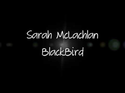 Blackbird Sarah McLachlan + Lyrics