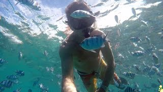 2015-11-17 Me and my fish in Blue Lagoon
