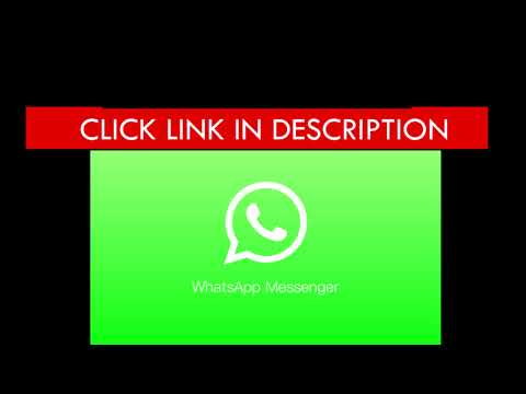 WhatsApp Messenger Apk for Android - Download Now