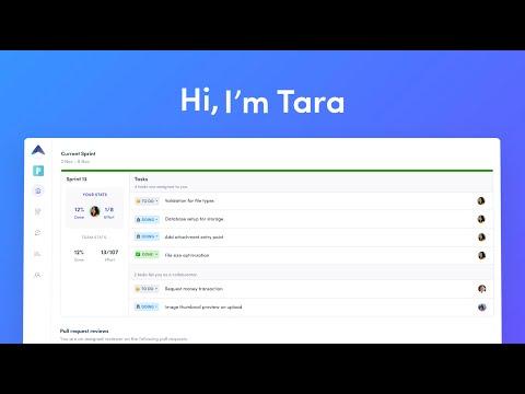 Tara AI for teams #0
