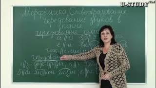 Подготовка к ЕНТ: Русский язык (Морфемика, Словообразование, Чередование звуков в корне)