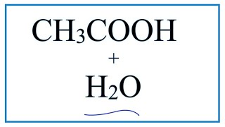 CH3COOH + H2O  (Ethanoic acid plus Water)