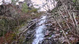 Black Bear Falls - Devil