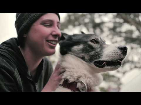Pet Supplies, Food & Accessories Online - My Pet Warehouse