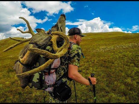 Colorado Archery High Country Deer Hunt // Sacred