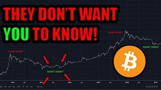 PROOF: They Are Lying To You About Bitcoin! Peter Schiff Might Own Bitcoin. Wall Street Buying.