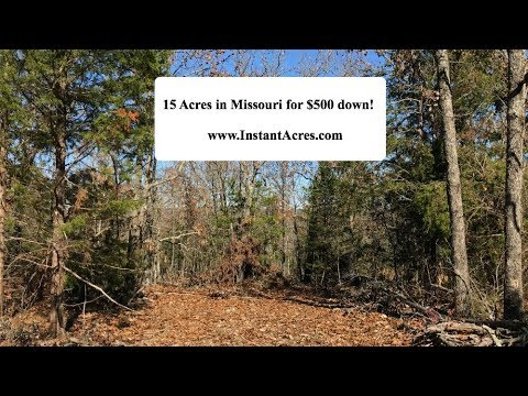 15 Acres in the Missouri Ozarks w/ Owner Financing! $500 down - electric, phone, timber! -- HR43