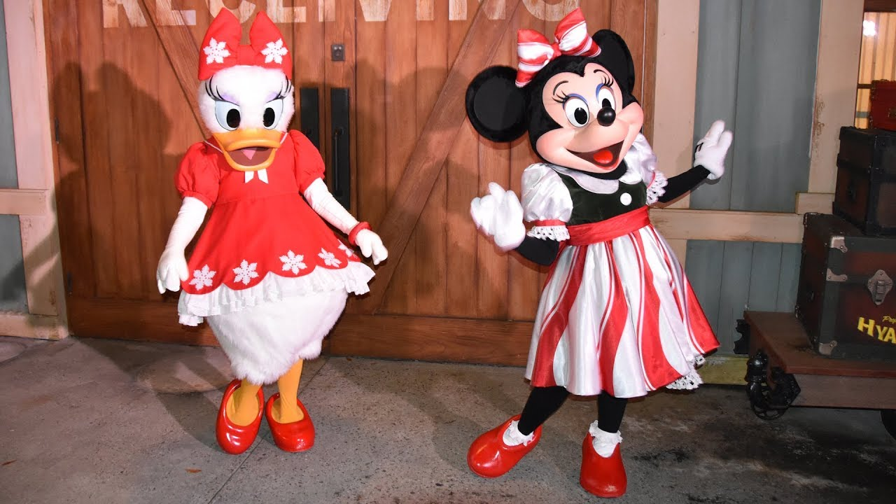 Minnie Mouse Christmas Dress.Minnie Mouse Daisy Duck In Holiday Outfits Meet Greet Mickey S Very Merry Christmas Party 2017