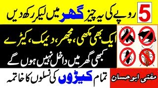 Deemak ka khatma - Housefly Solution in urdu - Wazifa for Insect - Chipkali Marne ka Wazifa