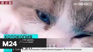 Новости России и мира за 21 августа - Москва 24