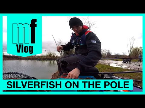 Match Fishing - Rob Wootton & Joe Carass - Silverfish On The Pole - VLOG