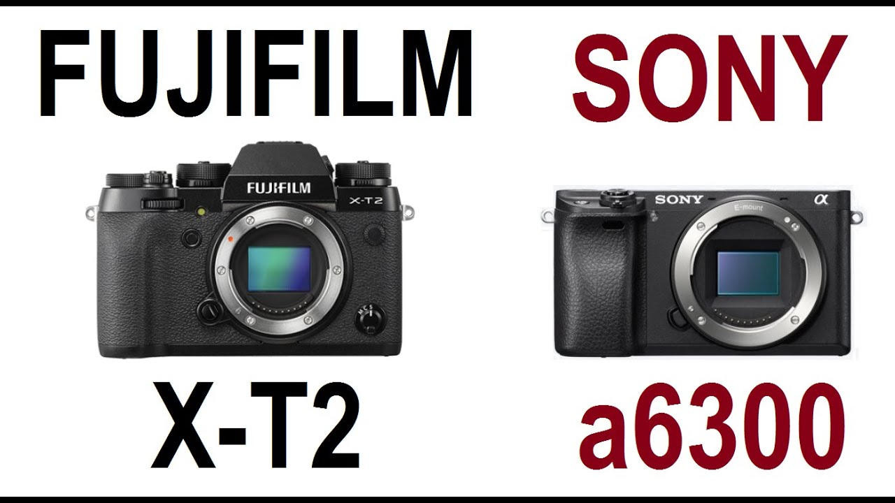 how to know the shutter count sony a6300