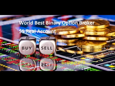 Forex news gun binary options