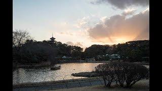 懐かしの曲を聴きながら、太陽が沈みかけた早春の横浜三渓園をご堪能下...