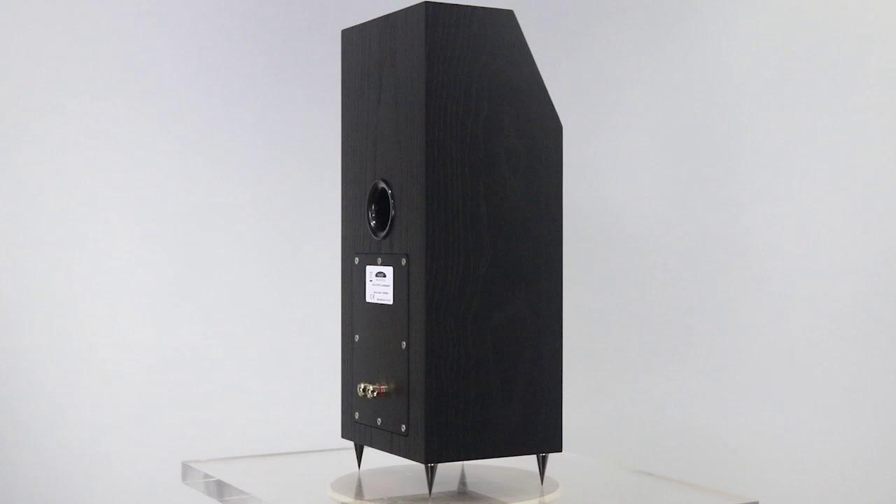 NEAT Iota Alpha Black Oak 1