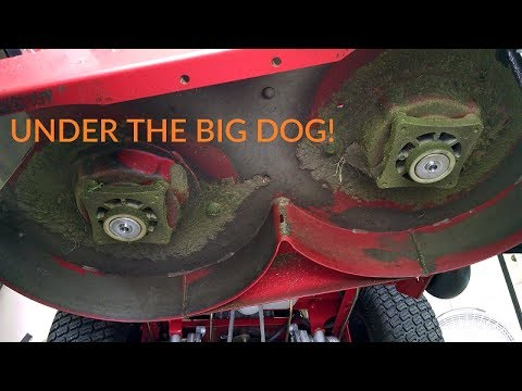 Big Dog Alpha Mower Blade Change Amp General Housekeeping