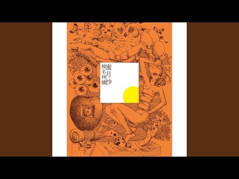 Marunouchi Sadistic (Electric Mole '03 / Live)