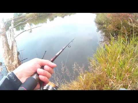 рыбалка в мельчевке дмитровский район