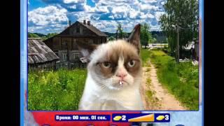 """ОТВЕТЫ Игра """"Найди кота""""  Одноклассники 31, 32, 33, 34, 35, 36, 37, 38, 39, 40 уровень."""