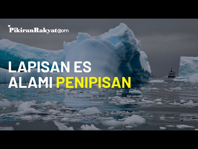 Peneliti Klaim Sebagian Daerah Akan Tenggelam Cepat Usai Lapisan Es di Antartika Alami Penipisan