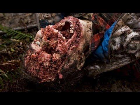 Страшный фильм ужасов|Новинка Глуш - Видео онлайн