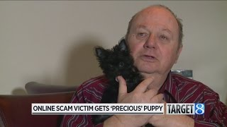 Strangers step up to help scam victim get puppy