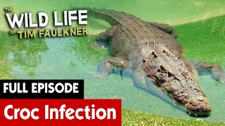Crocodile Is In Immense Pain | FULL EPISODE | S2E4 | The Wild Life of Tim Faulkner