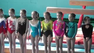 Спортивная гимнастика,город Рубцовск.