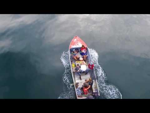 Halibut fishing | video by drone | Favorite channel Juneau Alaska