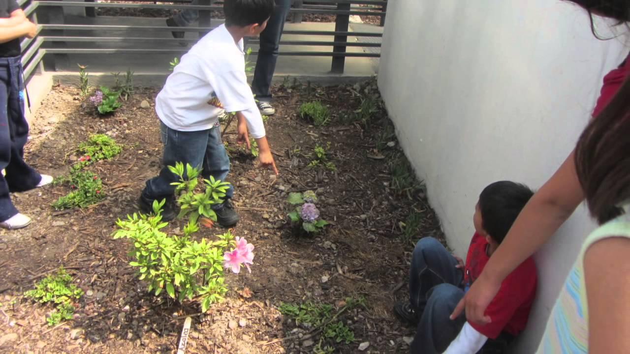 Curso de Jardinería para Niños - YouTube