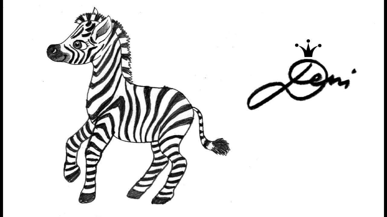 how to draw a zebra video