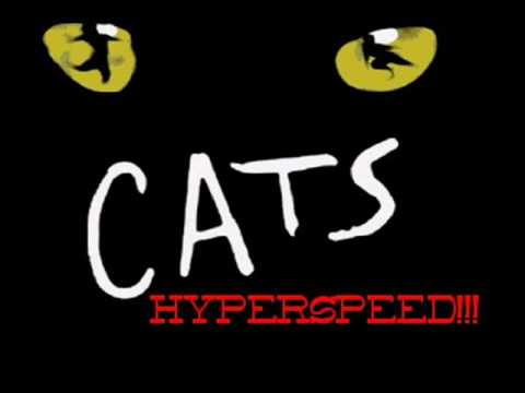 Cats Hyperspeed part 5