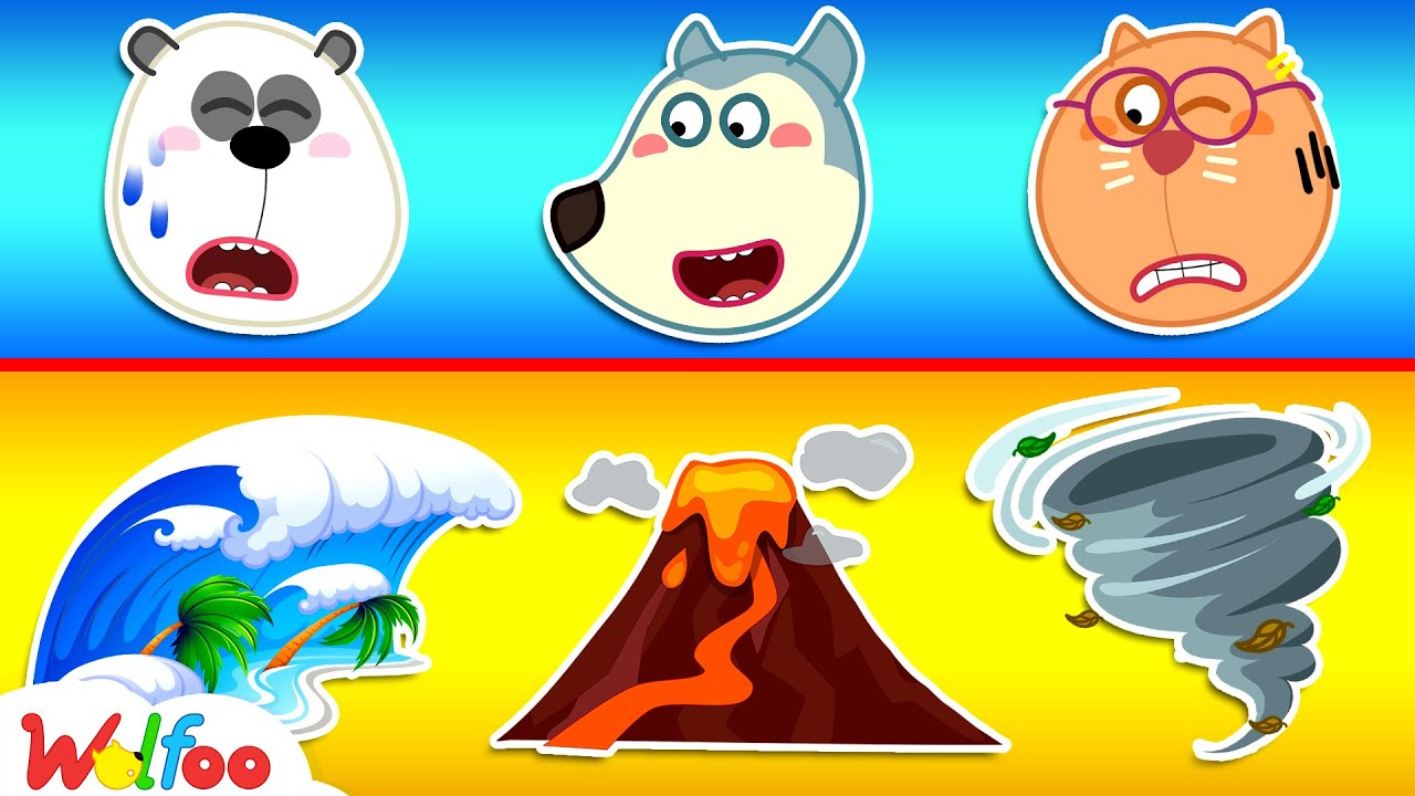 Wolfoo Learns to Stay Safe During Natural Disasters - Learn Safety Tips for Kids | Wolfoo Channel