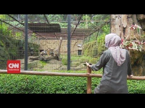 Wisata Bandung Merana Akibat Corona