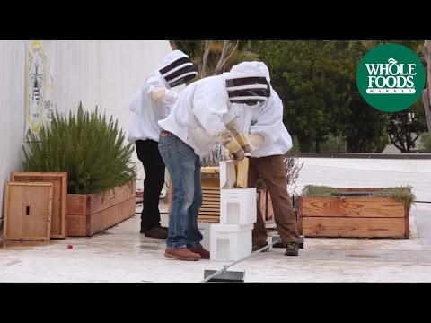 Santa Barbara Backyard Beekeepers  l  Love Local - Share The Buzz  l  Whole Foods Market