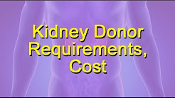 hqdefault - Cost To Donate A Kidney