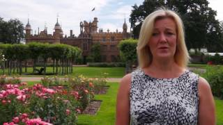 Quiet fireworks, recommended by Knebworth House