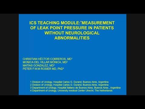 ICS 2014: Workshop 16, part 2 - School of Urodynamics Teaching Modules