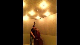 DITTERSDORF OBLIGATO PIRASTRO strings. Damián Rubido González , bass. Follow the links for +strings