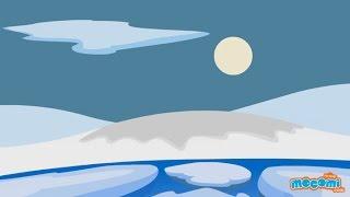North Pole - Fun Fact Series EP05   Mocomi Kids