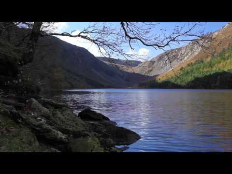 Nature Sounds with Classical Piano Music with Birds Singing & Calming Lapping Water-Johnnie Lawson