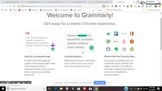 grammarly review 2.0