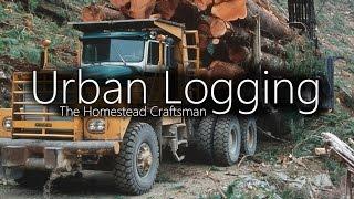 Urban Logging - Finding Free Logs For Lumber
