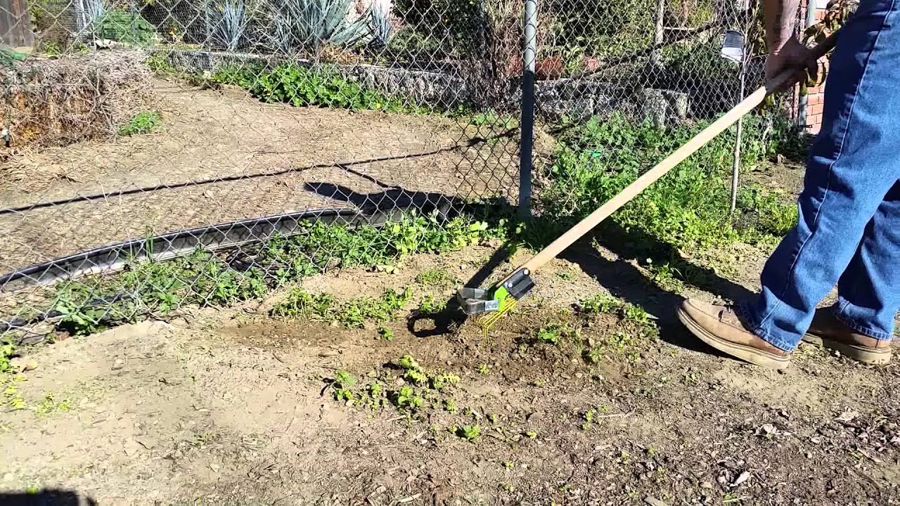 Weed And Rake Long Handle Gardening Tool