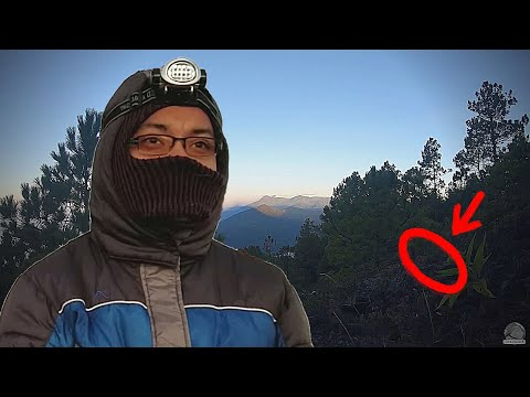 ASÍ es QUEDARSE SÓLO en la MONTAÑA | Volcán Atitlán 🌋
