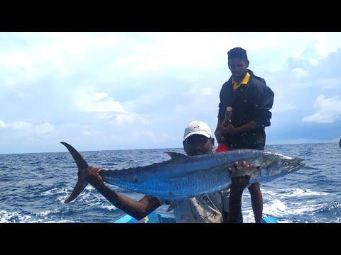 MONSTER KING FISH CATCHING AT DEEP SEA//AMAZING FISHING SKILL